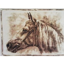 Bavlněný povlak na polštářek 40x40cm kůň
