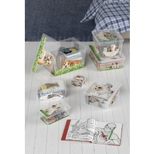 KIS C box Puppy and Kitten - CUBE